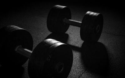 Bowflex Hanteln – Clevere und zeitsparende Lösung zum Verstellen der Gewichte